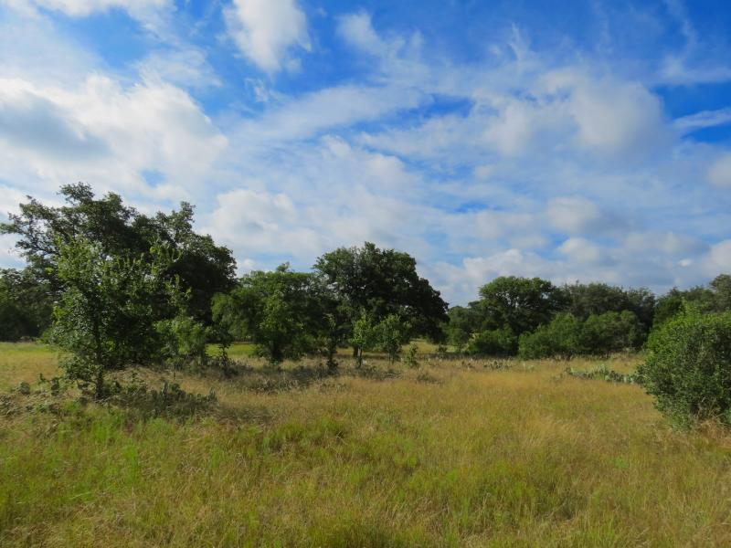 Horseshoe Bay 72 a great hunting property for sale in texas