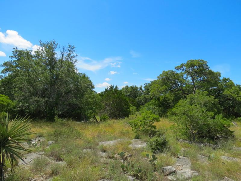 Horseshoe Bay 72 a great hunting land for sale in texas