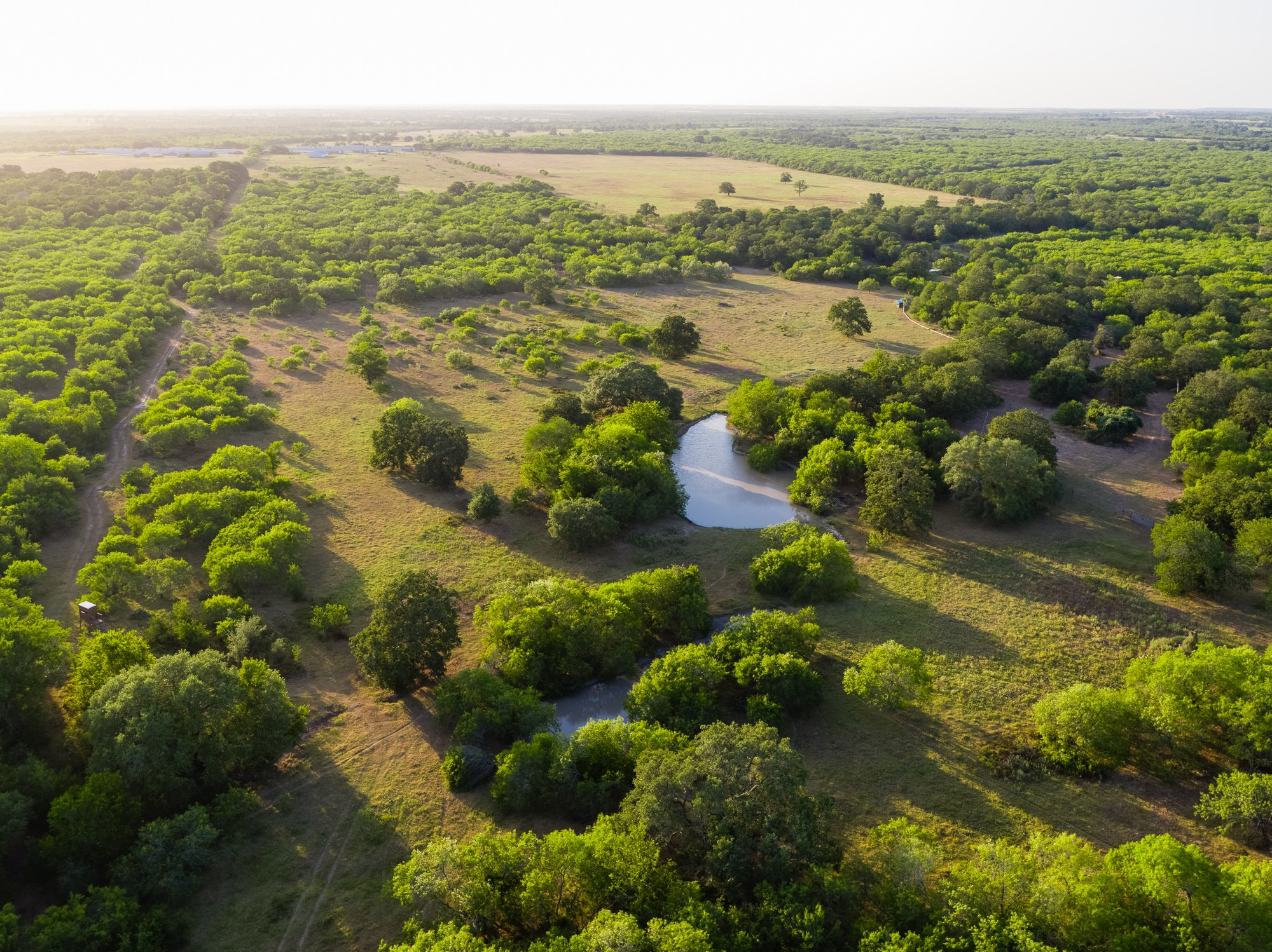 Smiley Ranch is a hunting ranch for sale in Texas