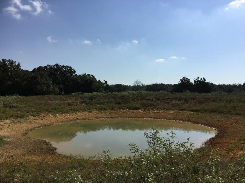 Waelder Ranch with a private water hunting ranches in texas