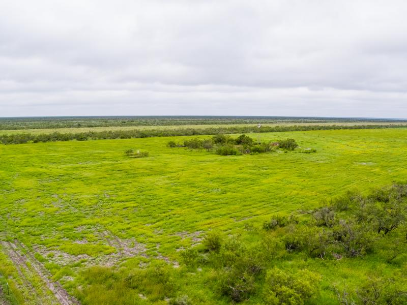 Cow Creek a beautiful ranch for sale in south Texas