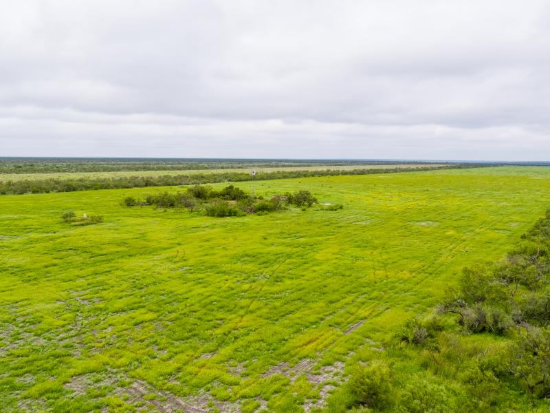 Cow Creek pasture for sale in South Texas