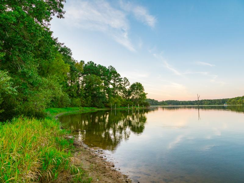 Lake Palestine has a private cove overlooking an island