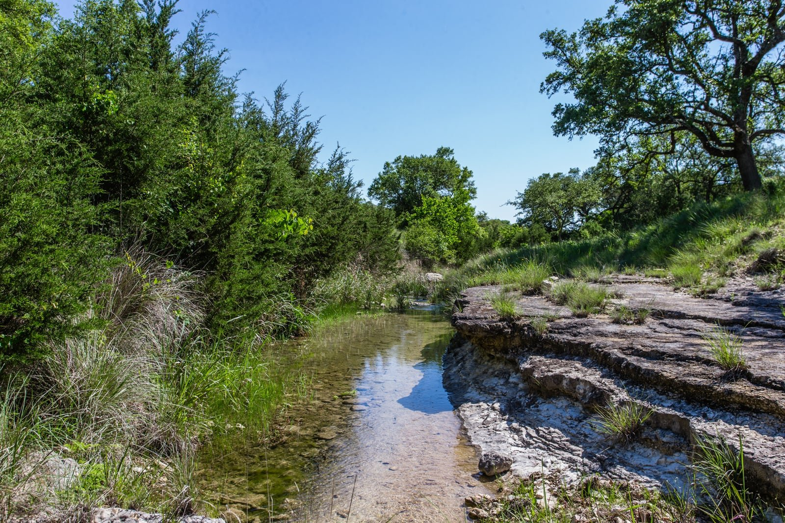 corporate ranch for sale in texas