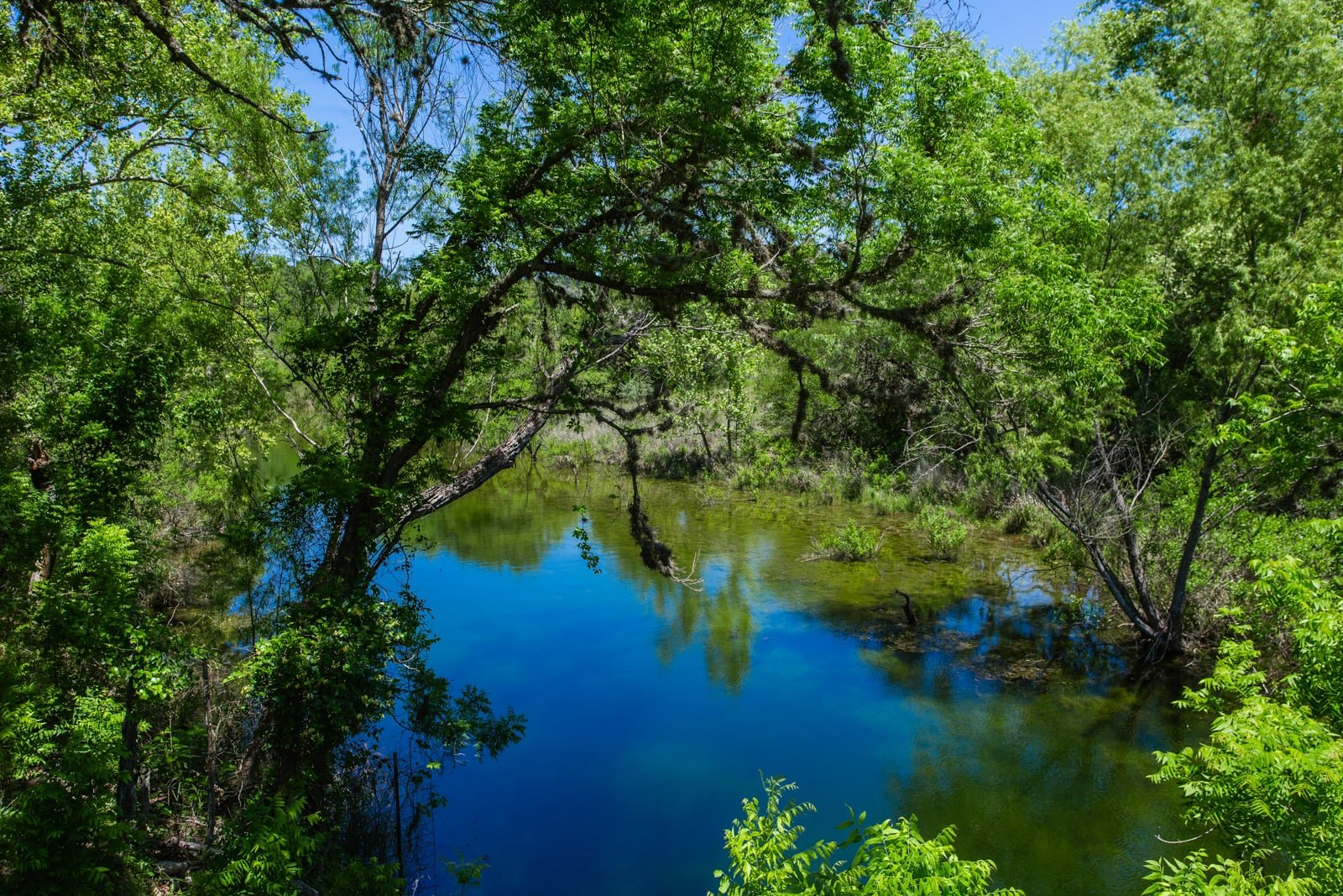 texas hill country land for sale