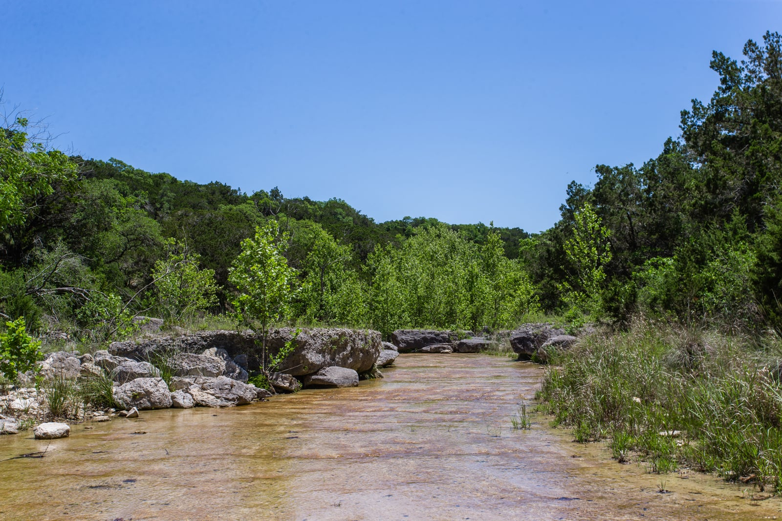 texas land and ranches for sale